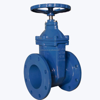 DIN standard PN16 Cast Iron Bronze Trim Gate Valve