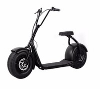 2016 The most Fashionable citycoco scooter in electric