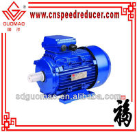 Y2 series three phase fan cooled electric motor