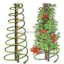 Tomato growing spiral/plant support wire/growing spiral