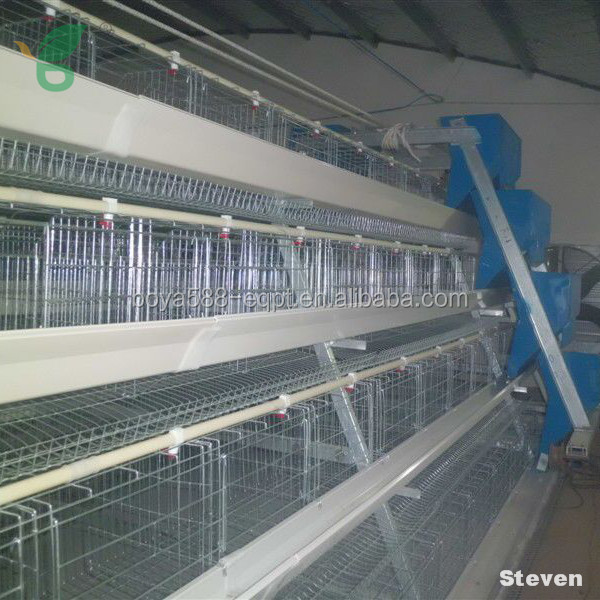 folding chicken cage/ plastic chicken cage/ chicken laying cage