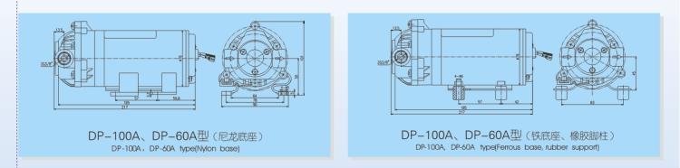 DP-100A 60A