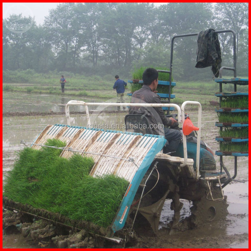 Robeta rice transplanter/kubota rice planting machine