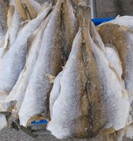 High quality with dried salted cod fish