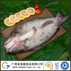Export Ocean Food Wholesale Butterfly-Cutted Fish Whole Frozen Channel Catfish