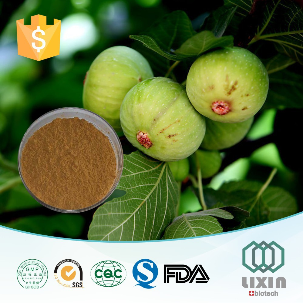 High Quality Water Soluble Fig Extract Juice Concentrate Powder organic 10:1 brown fig extract powder