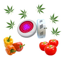 High Power 135w 300w Full Spectrum UFO LED Grow Light Panel for Veg Flower