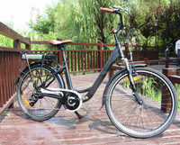 two seat panasonic electric bicycle with rear rack fenders