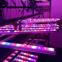New greenhouse led lighting growbar led grow bar 35W 45W 55W DC 12v led grow lights for plants flower hydroponics system