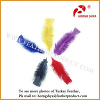Dye Turkey Feathers for sale