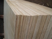 Kego selling competitive plywood prices / building construction material ( ha@kego.com.vn)