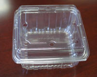 vegetable storage boxes,disposable plastic fruit box containers