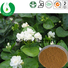 High quality hot sale Cppe Jasmine Fruit Extract supplied by factory /100% Pure Natural Cppe Jasmine Fruit Extract- Gardenoside
