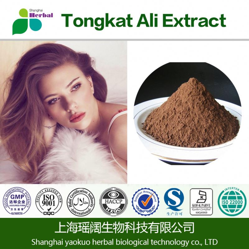 long time sex capsule product for men high quality OEM service natural herbal Tongkat Ali extract
