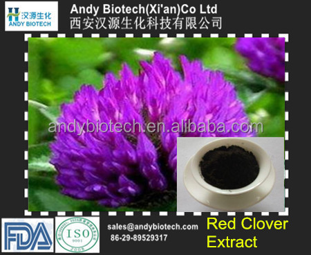 Plant Extract Hot Selling 20% Isoflavones red clover extract