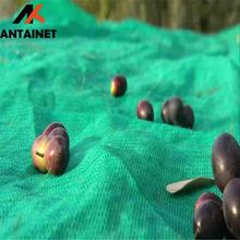 UV stabilized HDPE olive net for olive harvest
