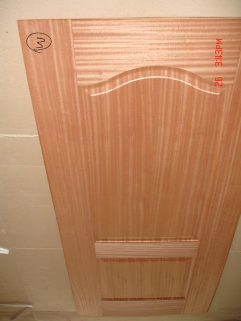 hdf mould door (Dv0008)