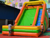 Top selling inflatable water slide with swimming pool, Giant Inflatable water slide for adult ,Inflatable slide for sale