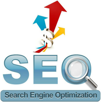 Professional internet service for google seo, website seo