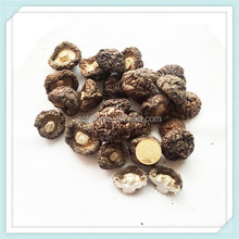 High Quality Dried Mushroom Dry Shiitake For Sale White Flower Mushroom