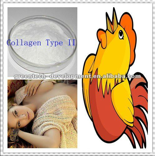 Hot Sell Medical Grade Chicken Collagen Type II