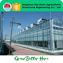 CE Certified animal growing Venlo green house with Long Service Life