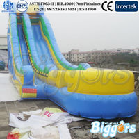 Carnival Big Kahuna Inflatable Water Slide With Climbing Handle