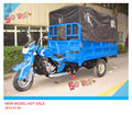 Self Design Rear Axle Cargo Tricycle Rickshaw (Model: HY250ZH-2Q)