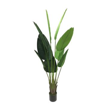 Botany Dongguan Artificial Plants Co Ltd
