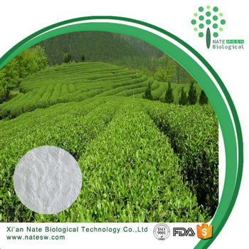 Natural Green Tea Extract Epigallocatechin Gallate EGCG 98% powder