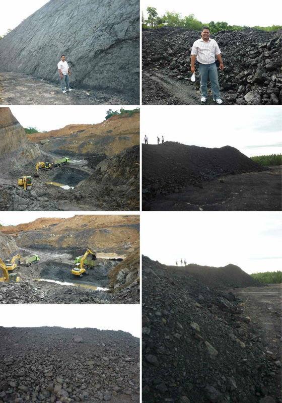 Indonesia Steam Coal for Sale