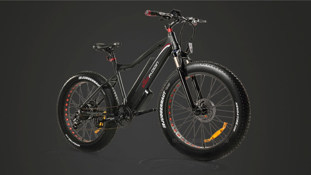 Latest Design 8fun/Bafang48v 1000w Electric Bike/Fat Ebike ebike electric fat bike STM-M02