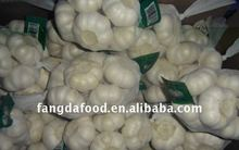 China new crop fresh red/purper garlic 2015 price