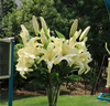 wholesale artificial plastic different kinds PU lily flowers