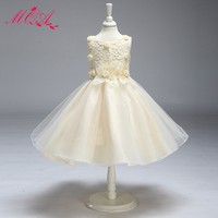 Short Puffy Party Dress for Girls Lovely Lace Flower Girls Dresses for Wedding LY9868