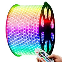 RGB LED Strip 220V-240V Waterproof 5050 SMD Lights Rope with Free AC Adapter