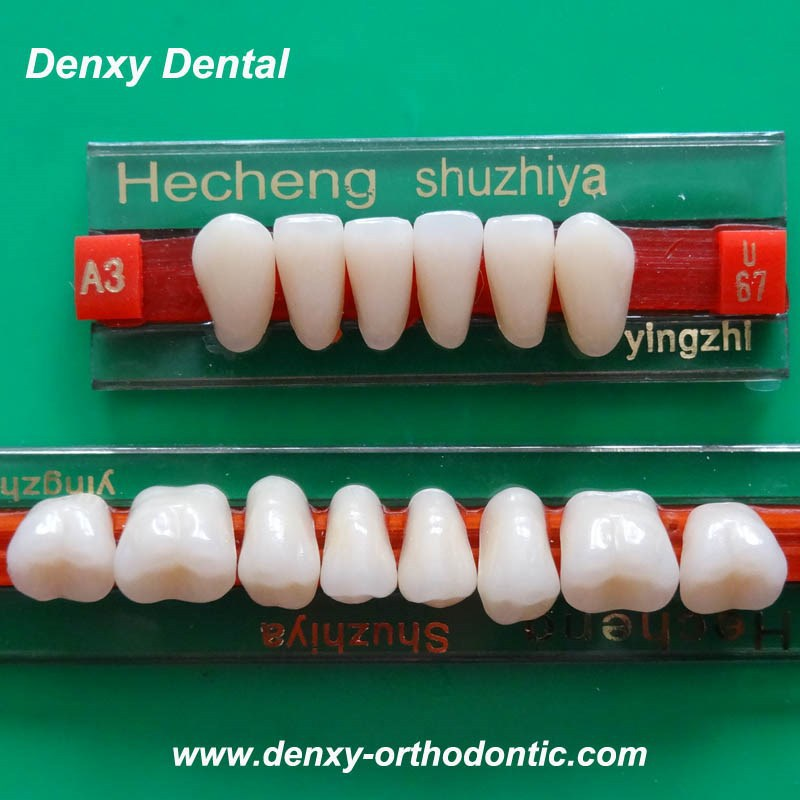 Dental Manufacturer Supplies Composite Denture Teeth Acrylic Teeth synthetic resin teeth