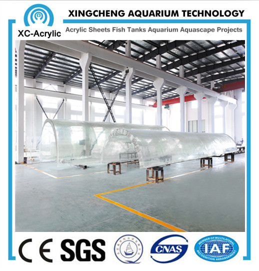 acrylic tunnel for oceanarium