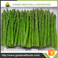 Frozen green asparagus spears with BRC/HACCP certificated