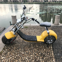 Nzita folding mini portable electric scooter for adult