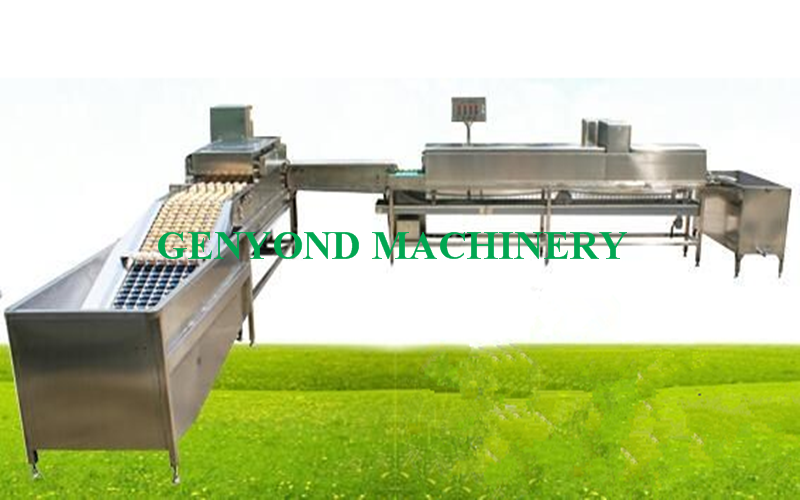 Top Quality commercial egg washing machine