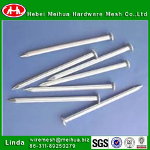 galvanized common nails/stainless steel common nail