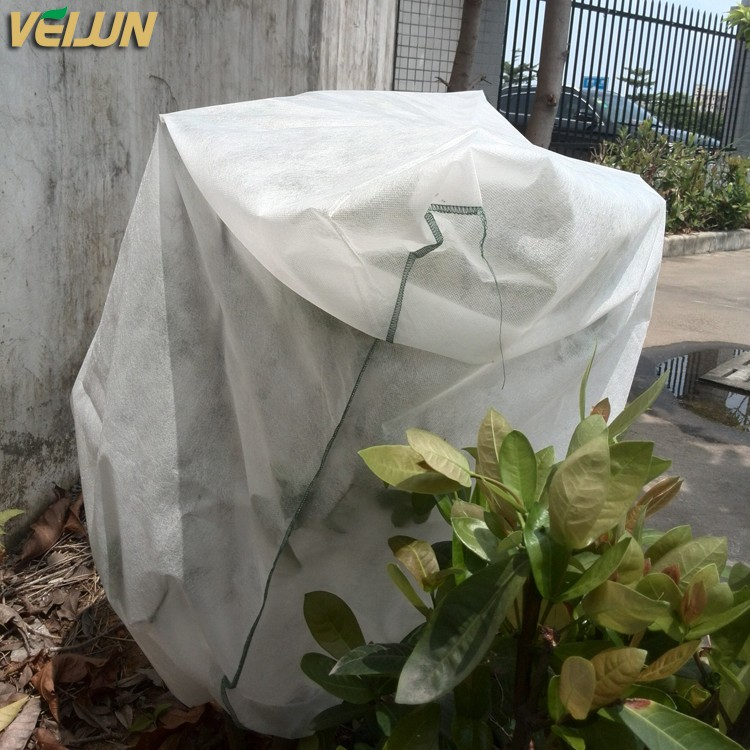 4% Anti-UV 100% Virgin PP granules for tree cover bag