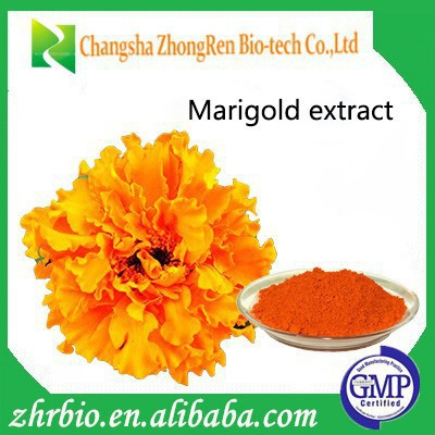 factory price OEM marigold extract lutein powder xanthophylls Marigold Flower Extract Lutein/zeaxanthin capsule tablets