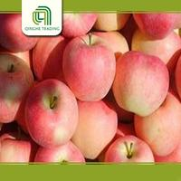 Brand new fuji apple exporter in china with high quality