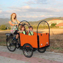 Electric rickshaw adult tricycle for cargo /electric 3 wheel bike/motor bike