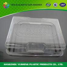 Custom shape plastic hot and cold insulated food container
