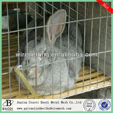 Welded rabbit cage wire mesh (Manufactory)