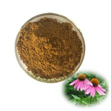 High Quality Echinacea Extract / Echinacea Purpurea Extract / Polyphenol with free sample