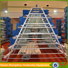 Construction of poultry cage/professional manufacture chicken farm used chicken cages